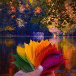 دلایل علمی تغییر رنگ برگ درختان در فصل پاییز