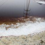 مدیرکل حفاظت محیط زیست خوزستان : شورهزارهای هورالعظیم فعلا شرایط ریزگرد نمکی را ندارد